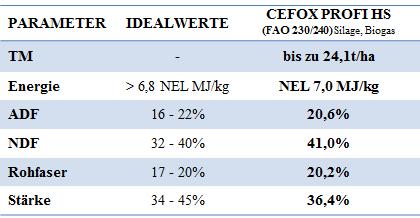 Mais-Cefox-Ergebnis2017
