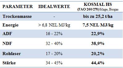 Mais-Kosmal-Ergebnis 2017