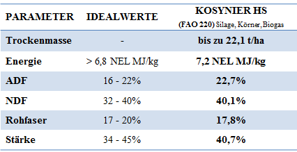Mais-Kosynier-Ergebnis2017
