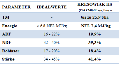 Mais-Kresowiak-Ergebnis 2017