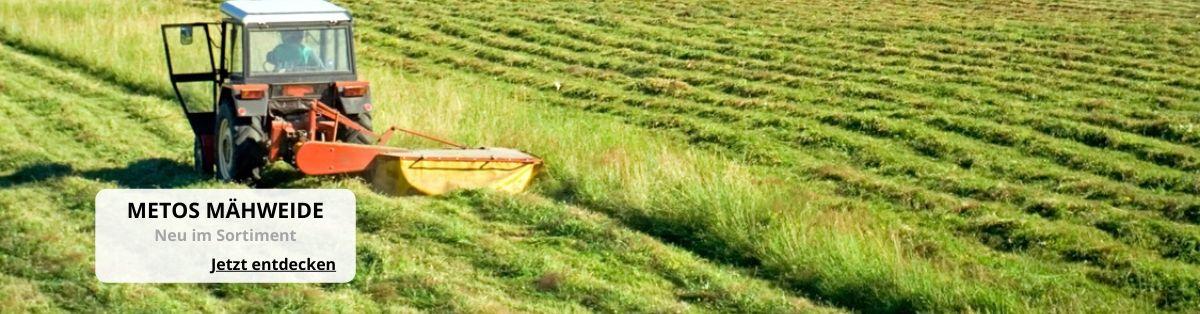 Saatgut Mähweide Mischung Gras